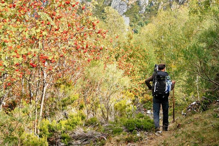 Por los bosques otoñales del parque natural.