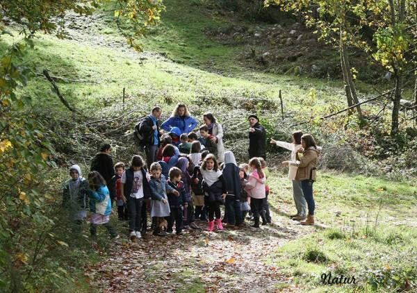 Actividades de educación ambiental sobre el oso pardo