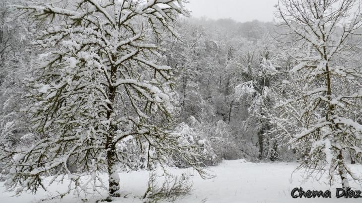 Muniellos en invierno