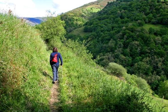 Tramos medios de los valles de Cangas del Narcea